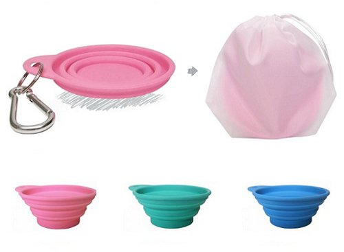Bliss Paws Collapsible Travel Bowl