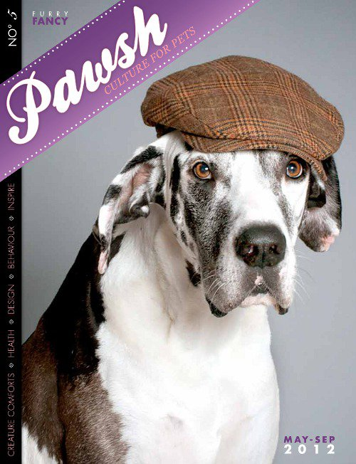 Spotted: The Fashionable Pooches of PAWSH