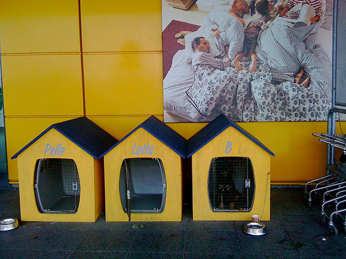 Dog Parking at IKEA