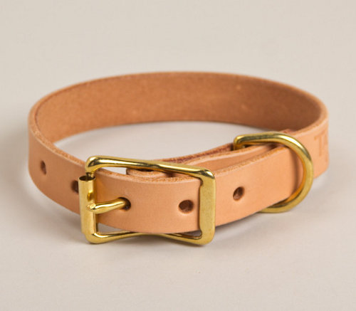 Tanner Goods Canine Collection