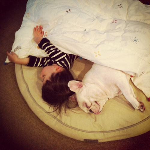 Aya Sakai's Instagram Photos of her Son and his French Bulldog