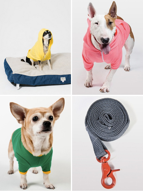 American Apparel Dog Collection