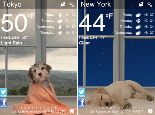 Weather Puppy: The Weather Forecast App