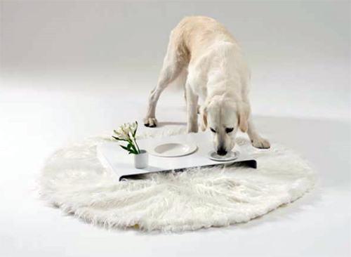 Room Service Feeder by Dog is a God