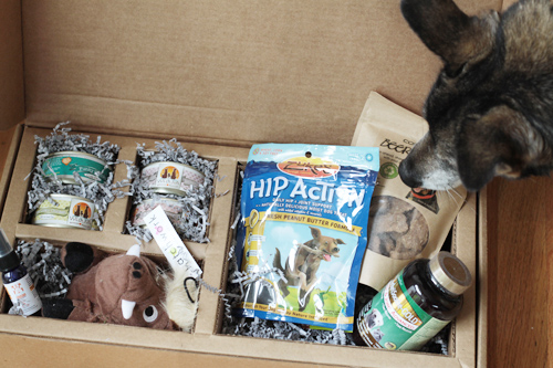Pawalla: Monthly All-Natural and Organic Dog Product Subscription Box