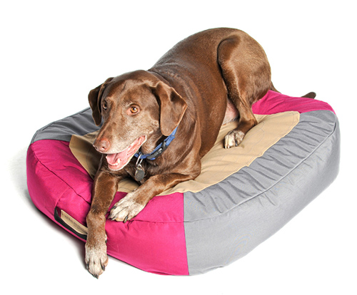 AstroPad Floating Dog Bed by Astral