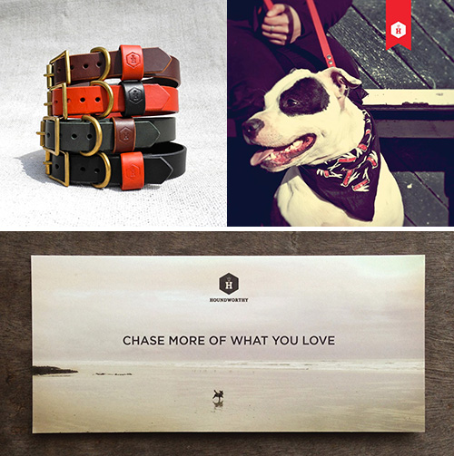 Introducing Houndworthy: A Curated Collection of Accessories for Pets and People