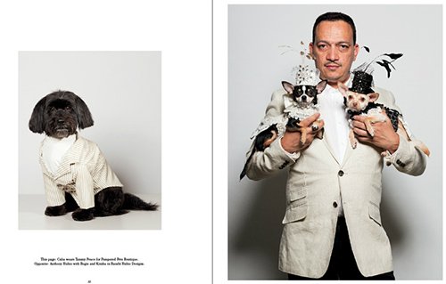 Couture Dogs of New York Photography Book by Paul Nathan
