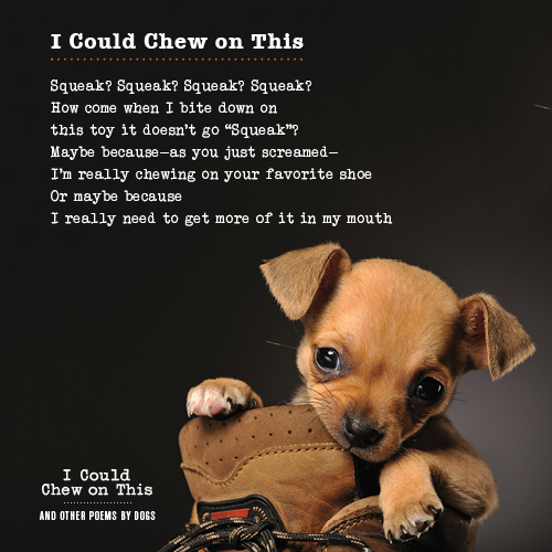 """""""I Could Chew on This"""" Book Giveaway from Chronicle Books"""