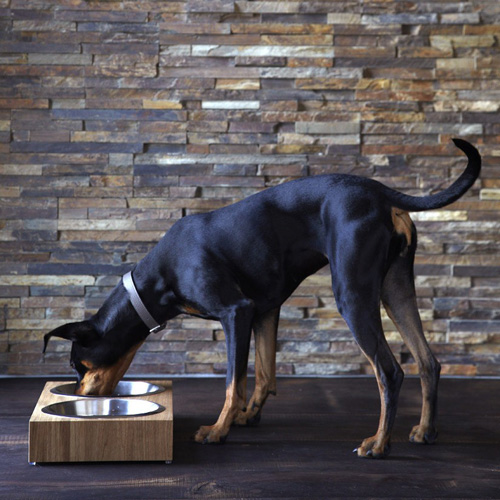 MiaCara Modern Dog Beds, Bowls, Collars, and Leads
