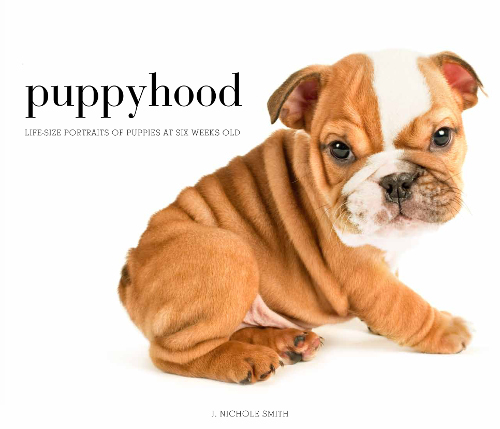 Puppyhood book by J. Nichole Smith