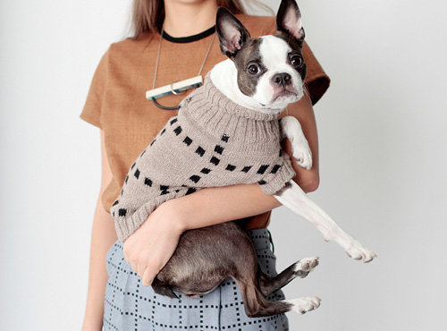 Dog Sweaters from Dusen Dusen