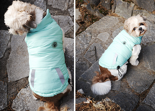 Review: Waterproof Fou-Ski Parka by FouFou Dog