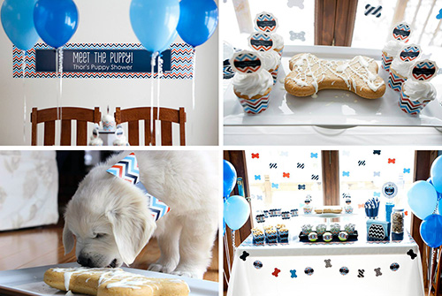 Themed Dog Party Kits from When Pooch Comes to Shove