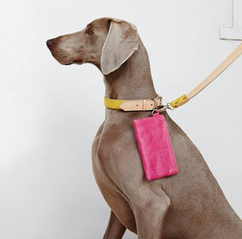 Stylish Dog Beds and Accessories from POOCCIO