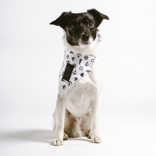 Dog Bandanas by Moodie Tuesday