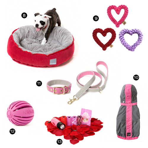 25 Valentine's Day Gifts for Dogs