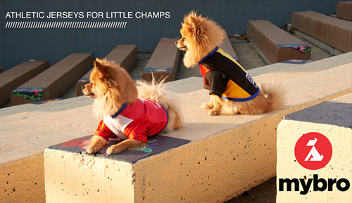 2014 World Cup Jersey Collection for Dogs by My Bro