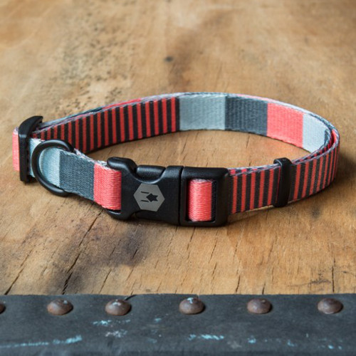 Modern Dog Collars and Leashes from Wolfgang Man & Beast