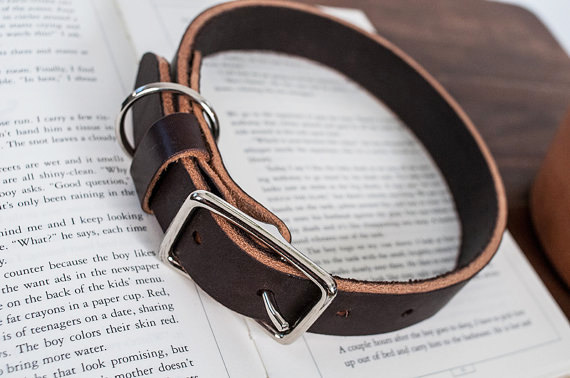 Hunter-Pass-handmade-leather-dog-leashes-collars-2