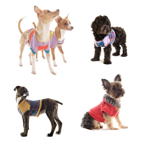 Stylish Dog T-Shirts and Sweatshirts by penn + pooch