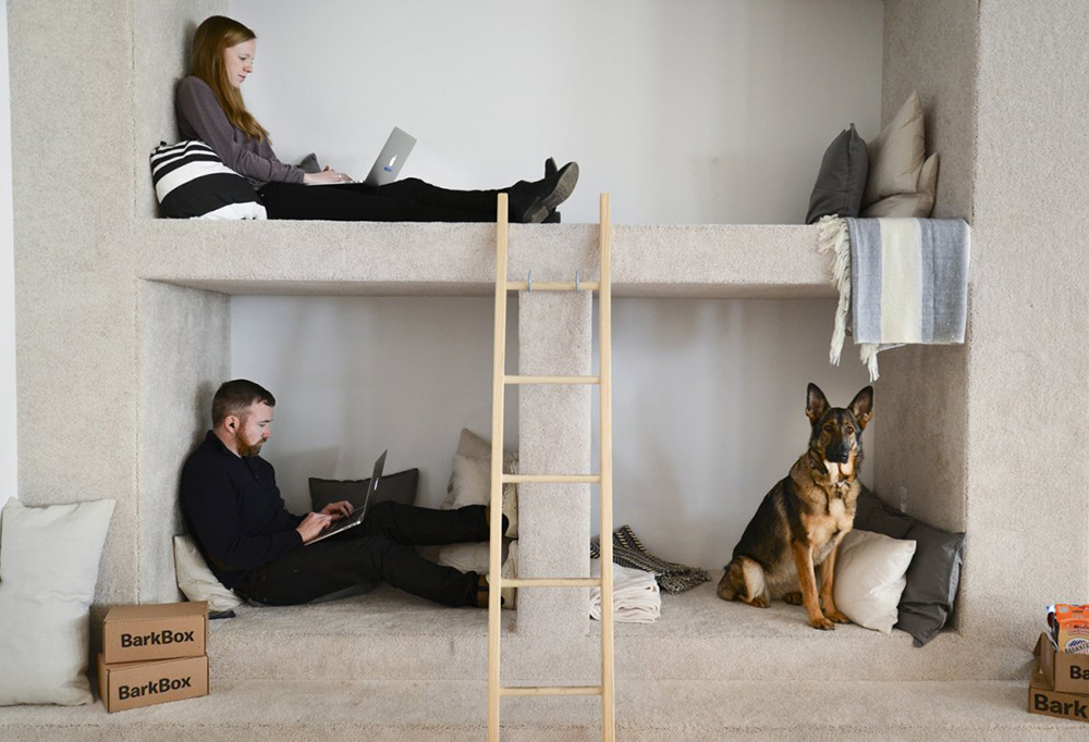 Spotted: BarkBox's Modern NYC Office