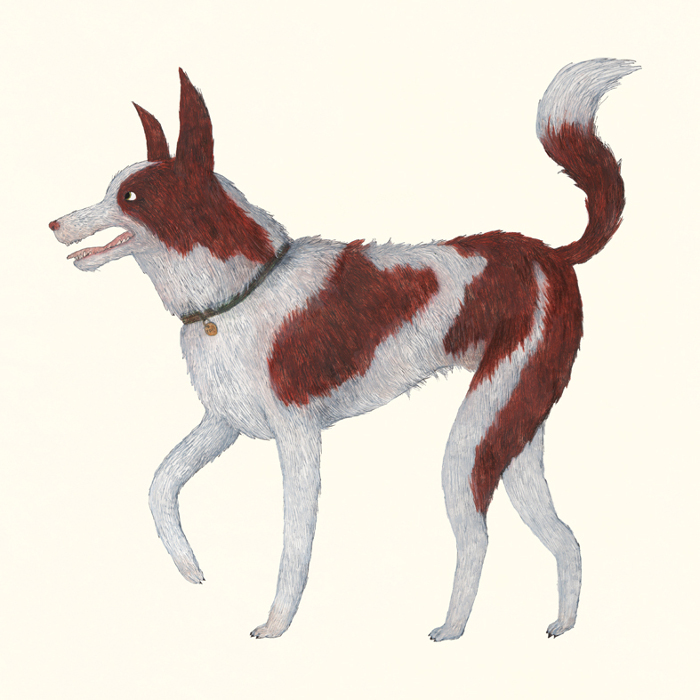 Illustrated Pet Portraits by Benjamin Phillips