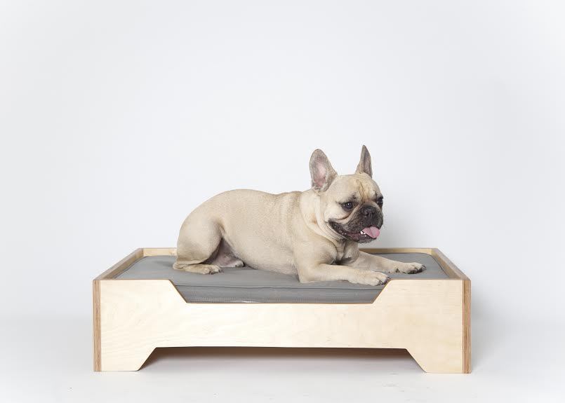Modern Dog Beds from PUP & KIT