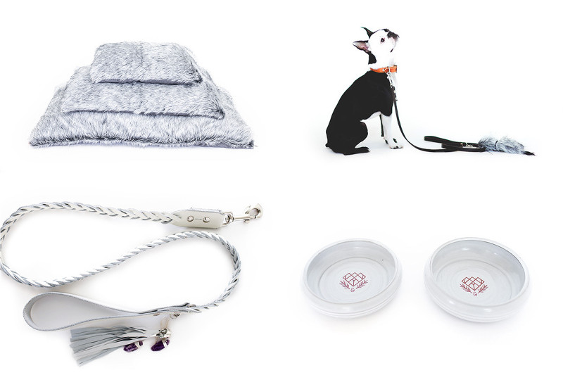 Modern Dog Beds, Collars, and Accessories from DOG & CROW