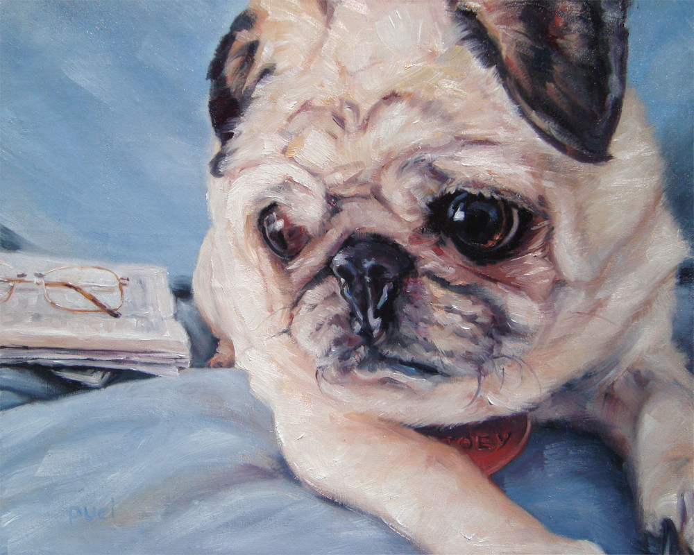 Pet Portrait Oil Paintings by Darlene Pucillo