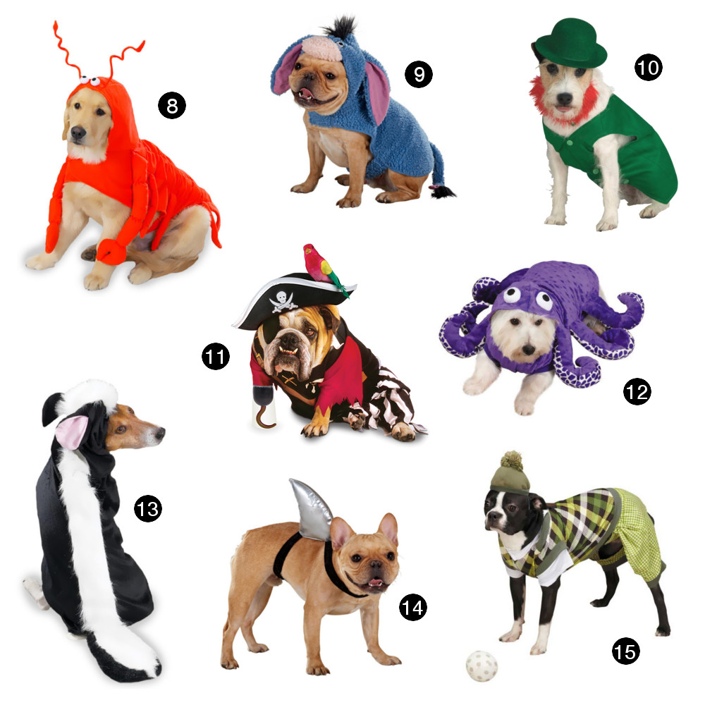 Halloween Hounds: 22 Adorable Dog Costumes for 2014
