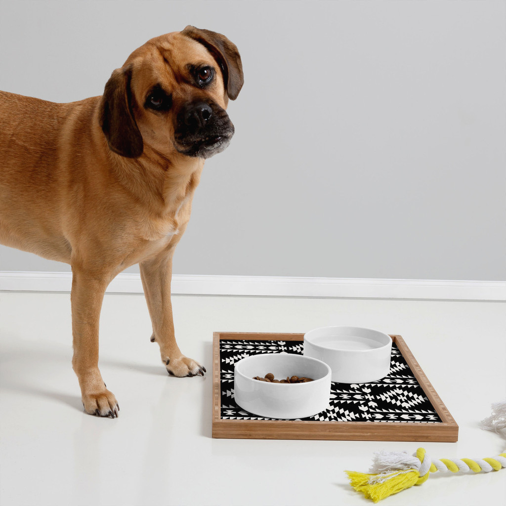 Modern Dog Bowls and Trays from DENY Designs