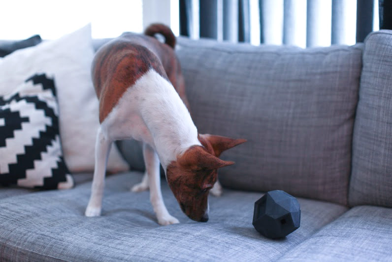 The Odin from Up Dog Toys: A Modern Puzzle Toy for Dogs