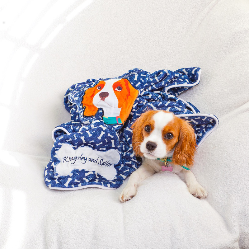 Custom Dog Beds, Toys, Coats and More from PrideBites