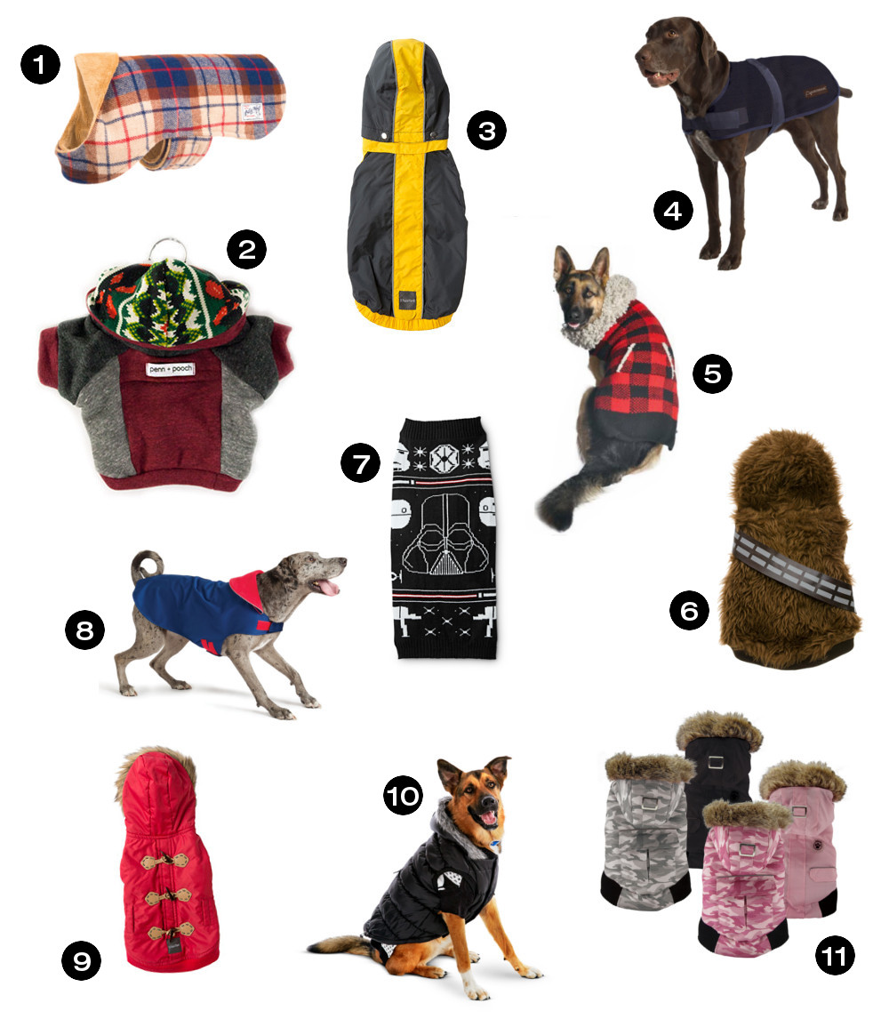 Dog Milk Holiday Gift Guide: Stylish Sweaters, Coats, and Jackets for Dogs