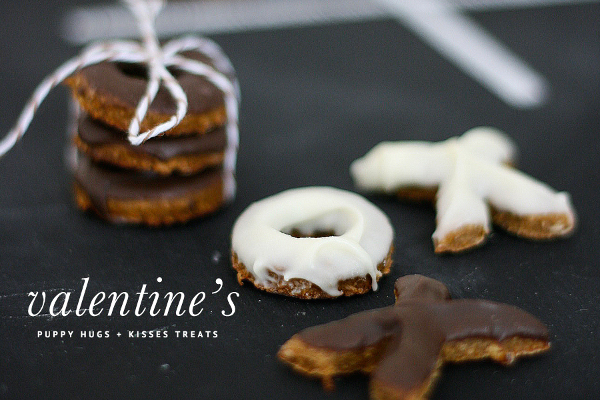 Dog-I-Y: 14 Homemade Dog Treat Recipes for Valentine's Day