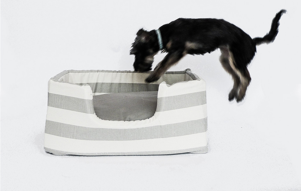 fitz-and-fellow-modern-dog-beds-8
