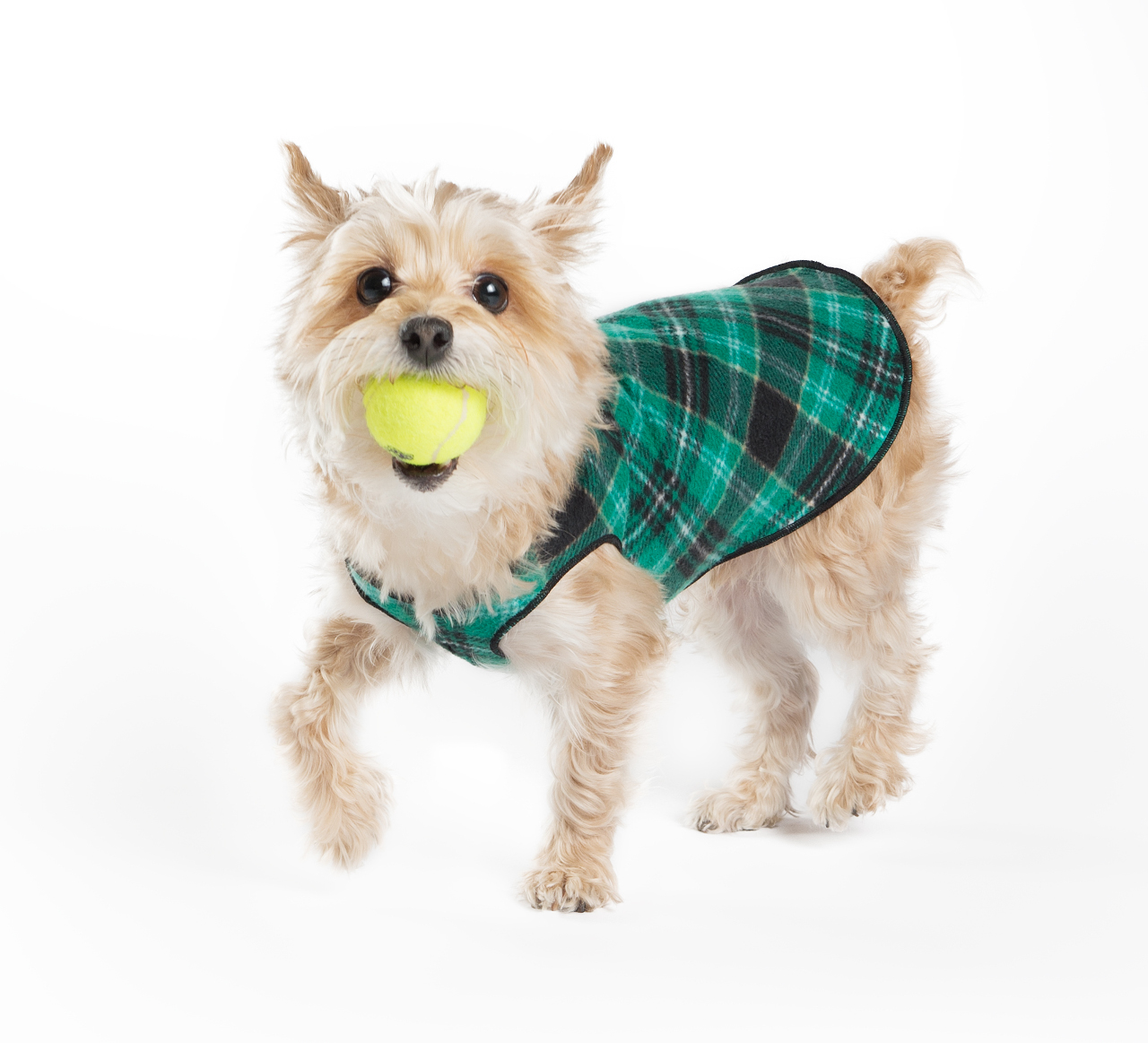 NEW: Stretch Fleece Pullovers in Plaid from Gold Paw Series