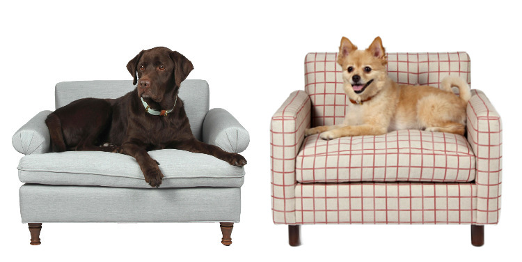 Dog Lounge Chairs from Yark