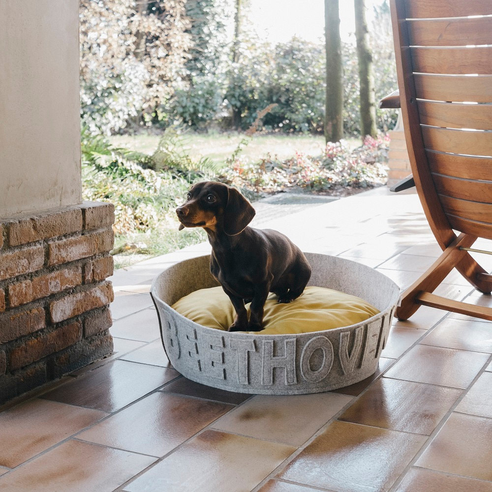 naps-design-modern-personalized-dog-beds-1