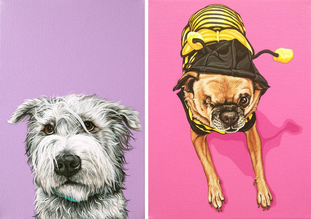 Contemporary Pet Portraits from Pop Zoo