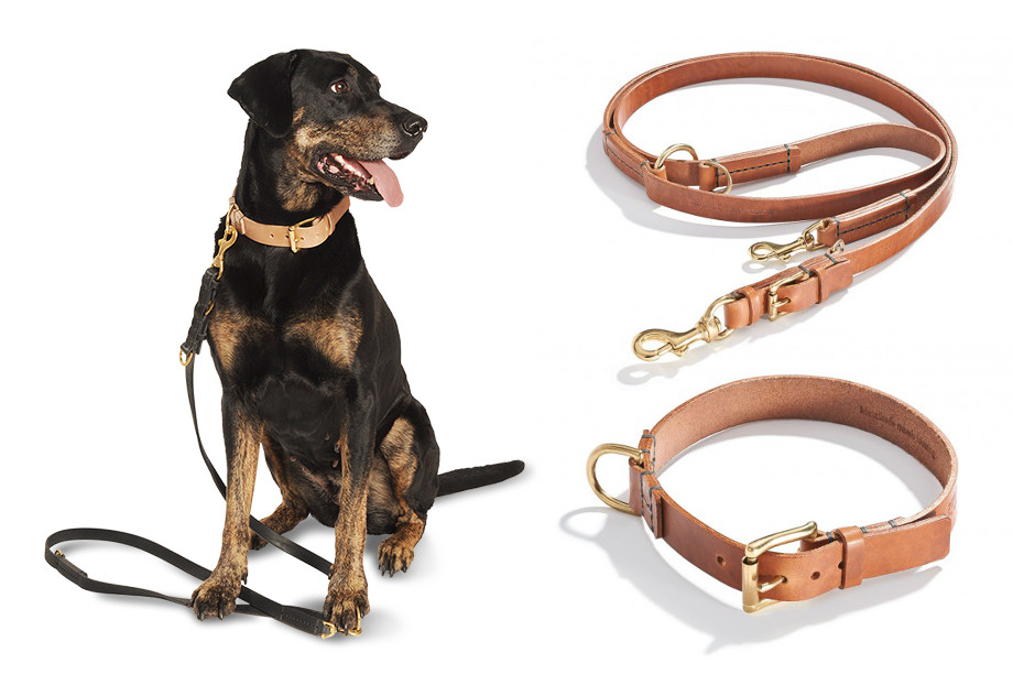 Hand-Crafted Leather Collars and Leads from Schröders Hund