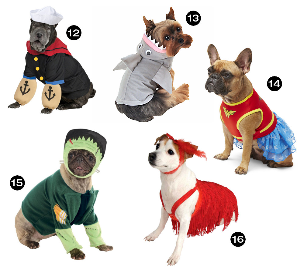 Halloween Hounds: 26 Awesome Dog Costumes for 2015
