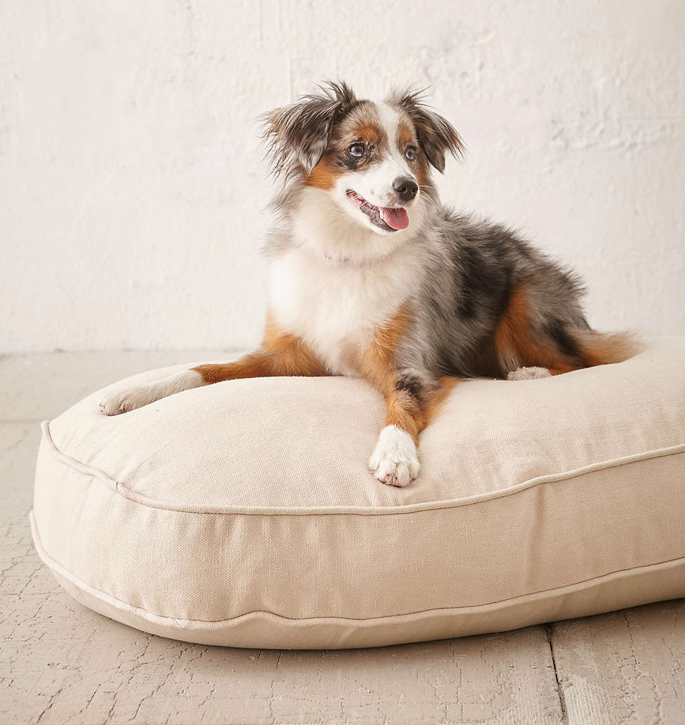 Picture of: Bowser Hemp Dog Bed