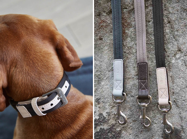 New Designer Dog Accessories from MiaCara
