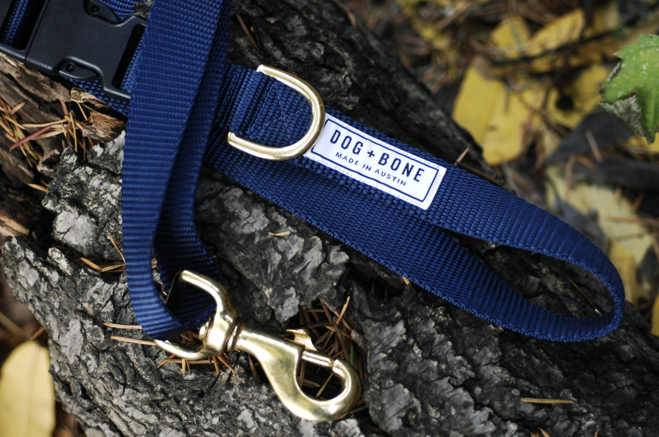 Adjustable Leashes and Martingale Collars from Dog + Bone
