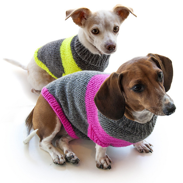 Dog-I-Y-dog-pullover-sweater-3