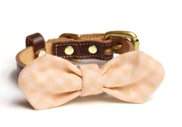 dear-doggy-walnut-collar-peach-picnic
