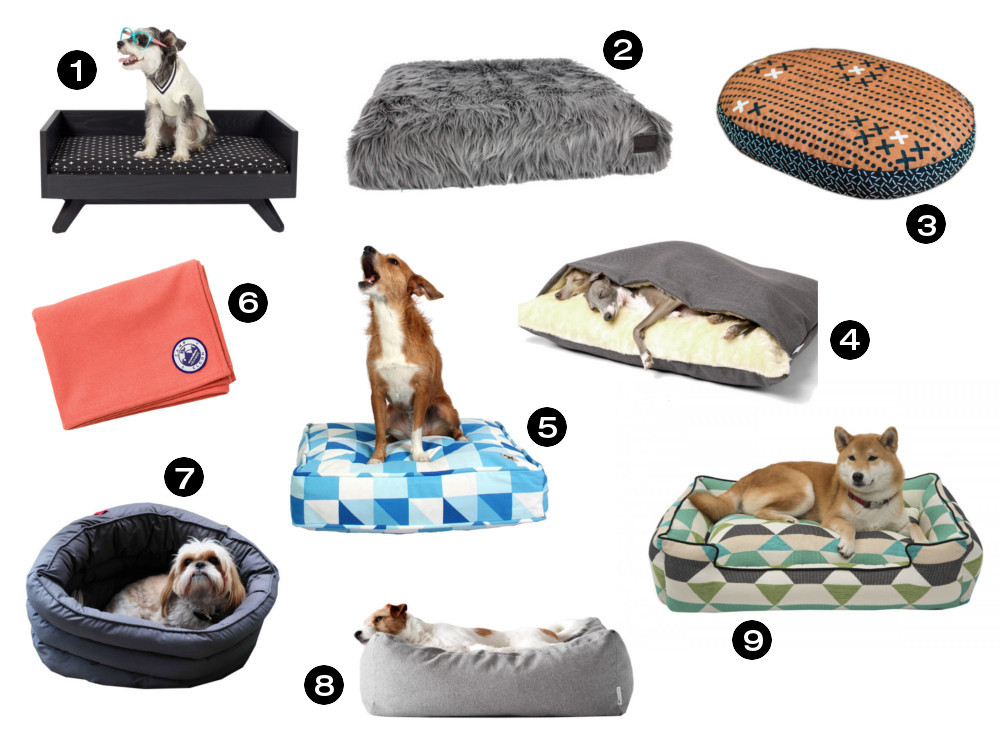 Dog Milk Holiday Gift Guide: 19 Cozy Dogs Beds and Blankets