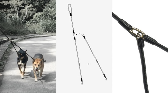 CLIC Leash from High5Dogs